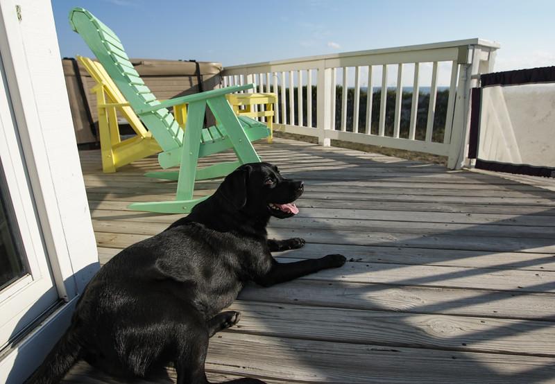 OBX 2007 - Megan on the deck - October 13