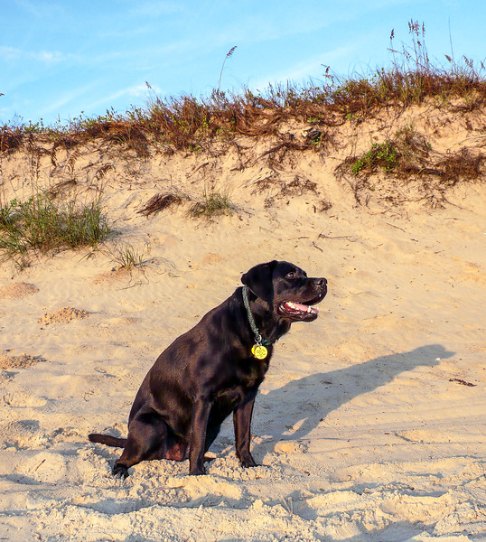 Megan by a sand dune - October 18