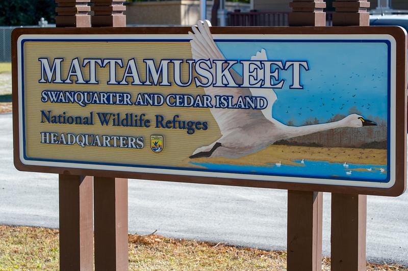 Mattamuskeet Wildlife Refuges - November 10, 2012