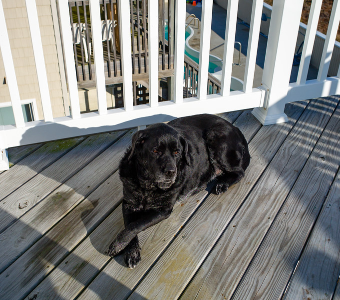 Megan on deck - November 11, 2012