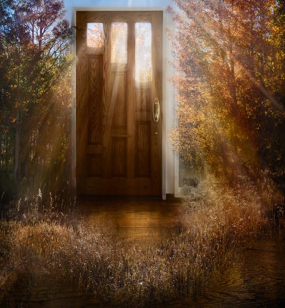 Autumn Shining In