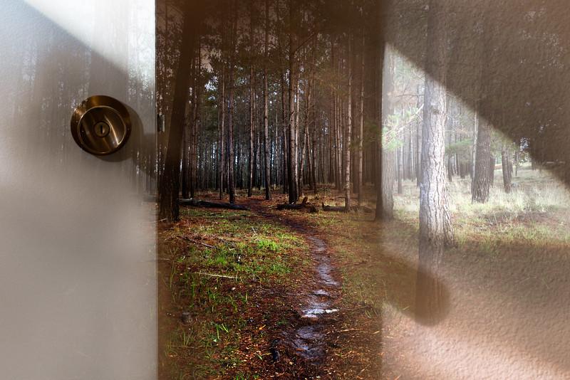 Explore Beyond the Door