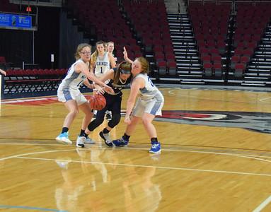 Sports_DISHS_girls_bball_defense_010220_JS
