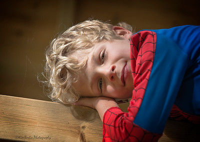 Spiderman At Rest - Woodchurch England