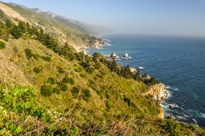 Grassy Pacific Slope
