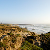 Sandy Bluffs of Fort Bragg ~ Pacific Coast