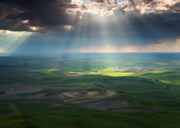 """Beams of Light"""