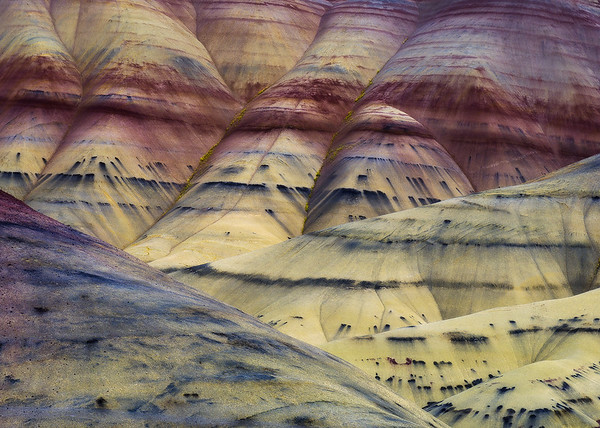 """""""Painted Hills Layers"""""""