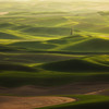 """Palouse Dreaming"""