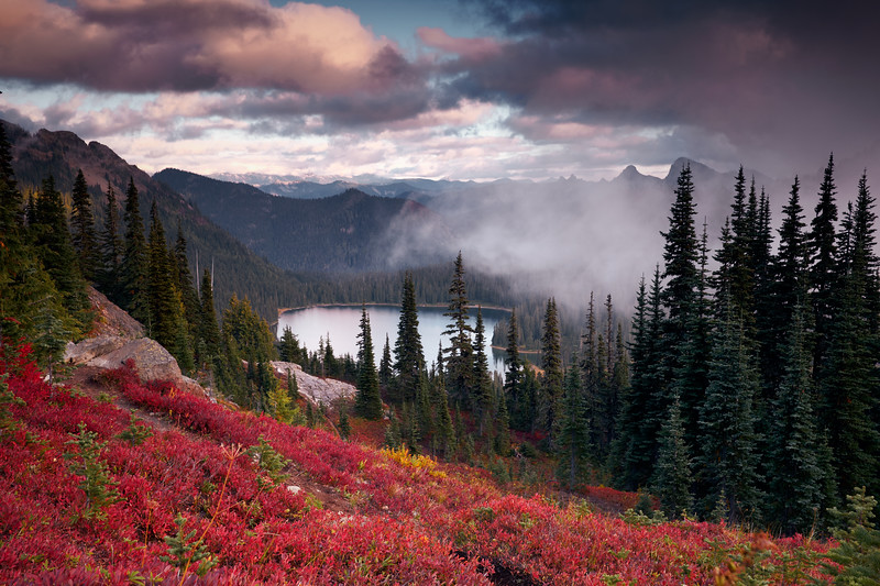 Autumn In Mount Rainier