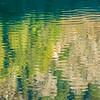 Golden Fish of Light