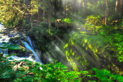 Sol Duc Falls. Hoh Rainforest. Olympic National Park. Wa.