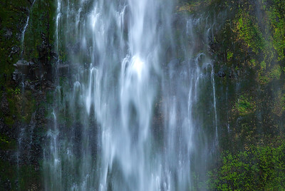 Marymere Falls. Olympic National Park.