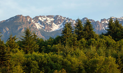Hurricane Ridge. Port Angeles, Washington State