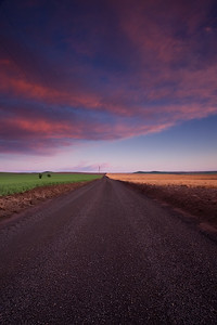 Dirt Road at sunset, Walla Walla, Wa.