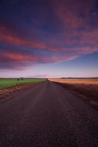 Dirt Road at sunset, Walla Walla, Wa.