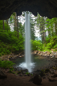 Ponytail falls from inside. Oregon