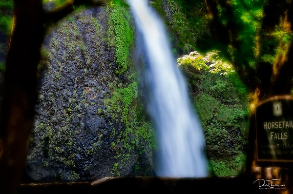 Horsetail Falls in Columbia River Gorge
