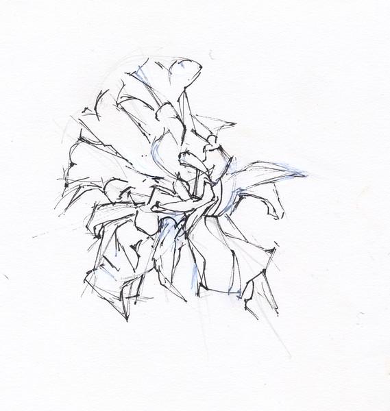 Dying Daffodil 6
