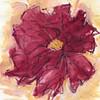 "Dahlia's Mindful Eye 1, 6"" x 7"", acrylic on paper"