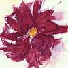 "Dahlia's Mindful Eye 3, 6"" x 7"", acrylic on paper"