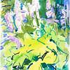 "Hosta Dance 1, 11""x14"", acrylic & pastel"