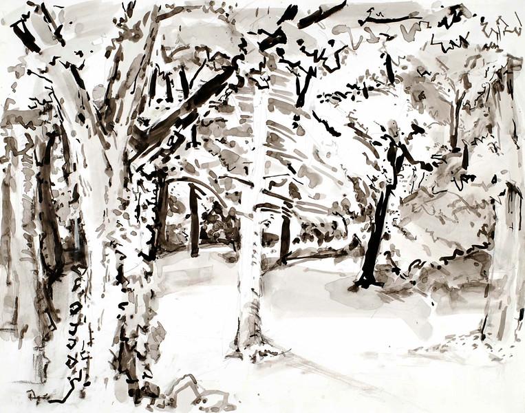 """Woods 18"""" x 24"""", ink"""