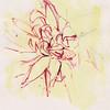 "Yellow Awakening, 6""x7"", acrylic on paper"