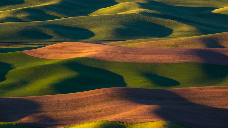 Palouse Waves and Patterns