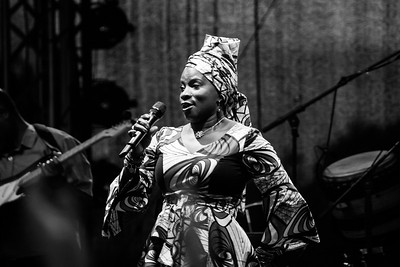 Angelique Kidjo Afrika Tage 2014