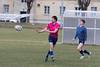 Wombats vs Stade 2017/03/04