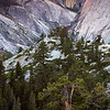 Half Dome from Tenaya Canyon - IMG#3348