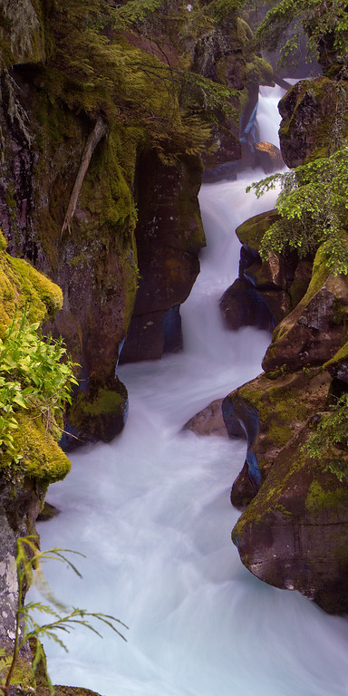 Avalanche Gorge - IMG#9082