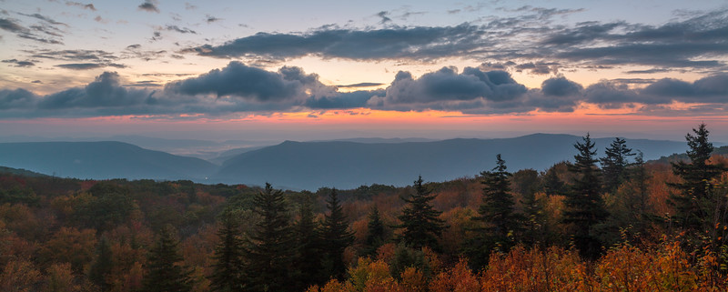 Dolly Sods Dawn 8378P