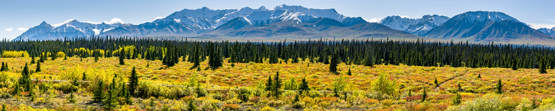 Kluane National Park Autumn Colours