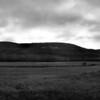 Shawangunk Ridge