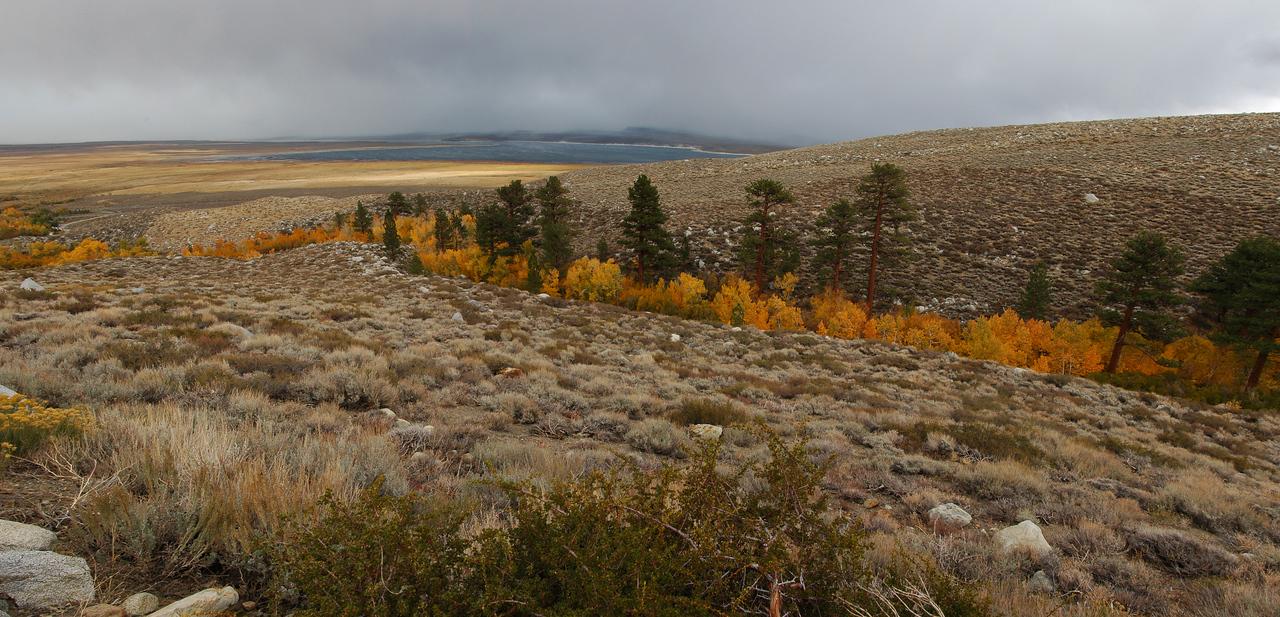 """""""Towards Alister"""" - McGee Creek facing Crowley Lake, Eastern Sierras, CA"""