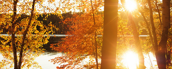 AUTUMN AT LITTLE BEARSKIN LAKE