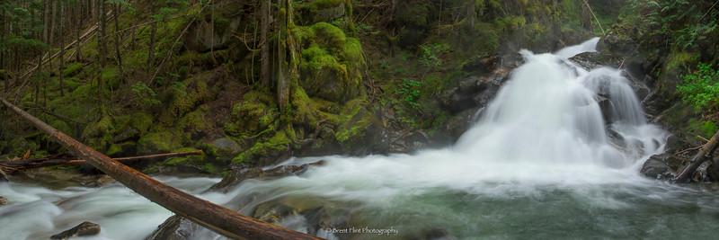 DF.4669 - Lower Snow Creek Falls, Kaniksu National Forest, ID.
