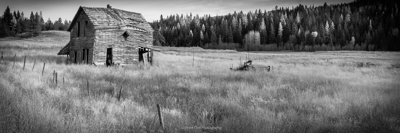 DF.4354 - old house in field, Pend Oreille County, WA.
