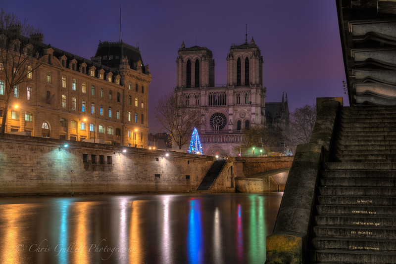 Notre Dame in Pre-Dawn Light