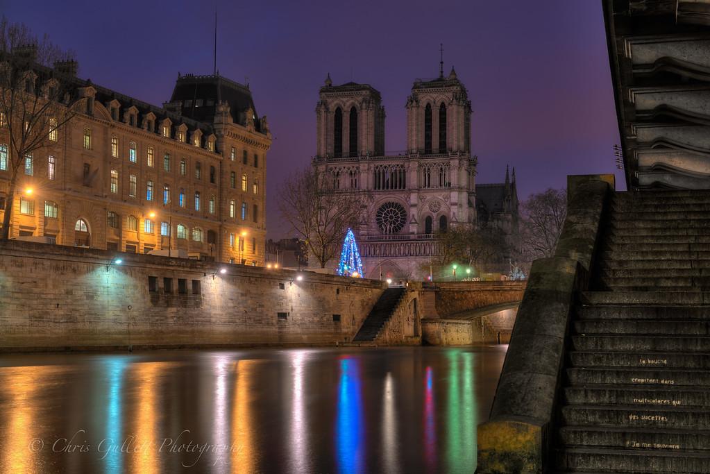 Notre Dame in Pre-Dawn Light