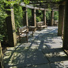 Hillwood Gardens DC - 07-18-08 - 028 NX_dxo