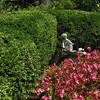 Hillwood Gardens DC - 07-18-08 - 024 NX_dxo