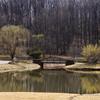 Meadowlark Gardens - 03-15-08 - 022 NX_dxo