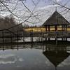 Meadowlark Gardens - 03-15-08 - 076 NX_dxo