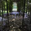 The Glen Burnie Gardens - 07-20-08 - 077 NX_dxo