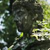 The Glen Burnie Gardens - 07-20-08 - 013 NX_dxo
