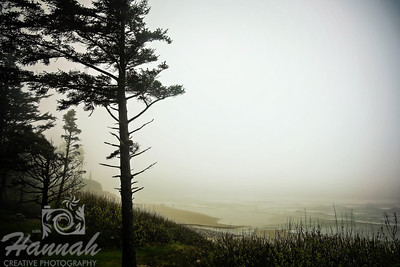 Beach on a gloomy and foggy day at Cape Lookout State Park in the Oregon Coast  © Copyright Hannah Pastrana Prieto