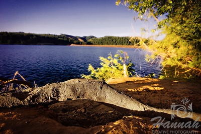Henry Hagg Lake & Scoggins Valley Park in Oregon  © Copyright Hannah Pastrana Prieto